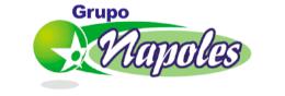 Grupo Napoles